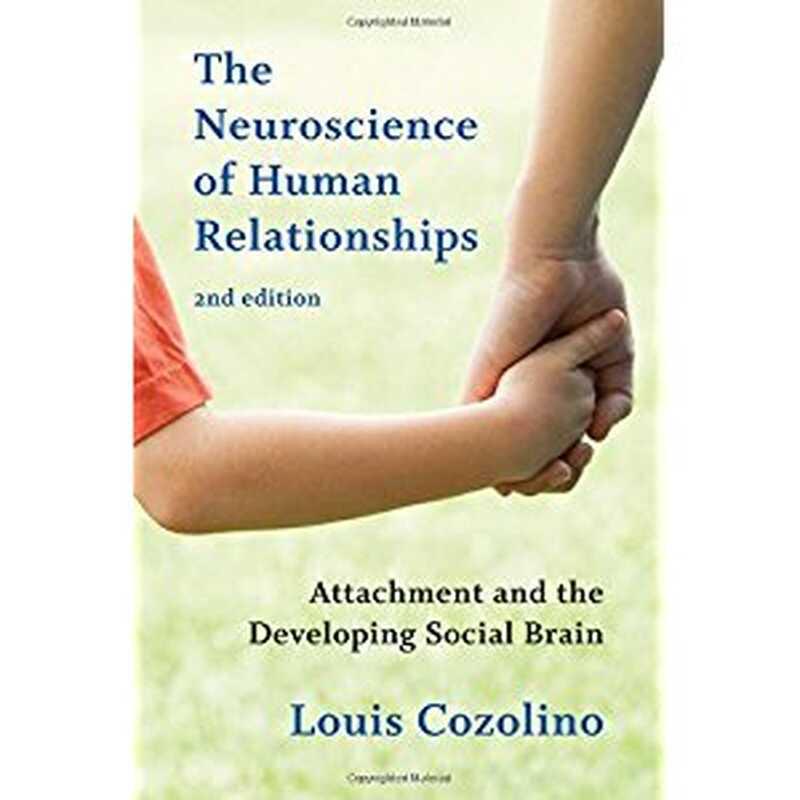 Neuronauka ljudskih odnosa: vezanost i razvoj društvenog mozga
