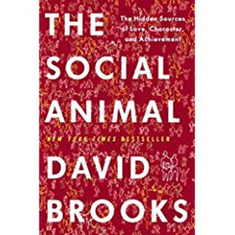 Das soziale Tier: die verborgenen Quellen der Liebe, des Charakters und der Leistung