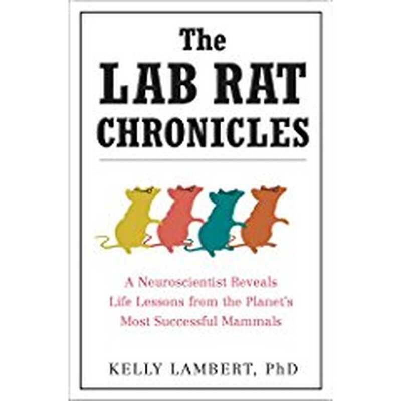 Hronike pacova u laboratoriji: neuroscientist otkriva životne lekcije iz najuspešnijih sisara na planeti