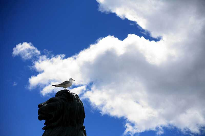 El significat de la recuperació i de trobar-vos: la història de Sui, part 3