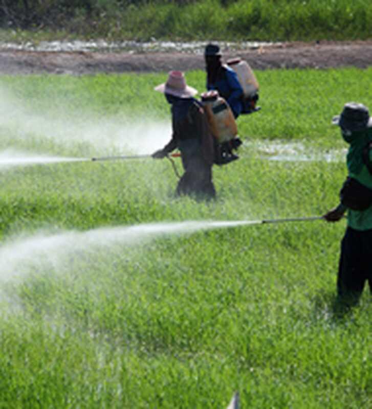 Pesticidi i depresija: veliko nepoznato
