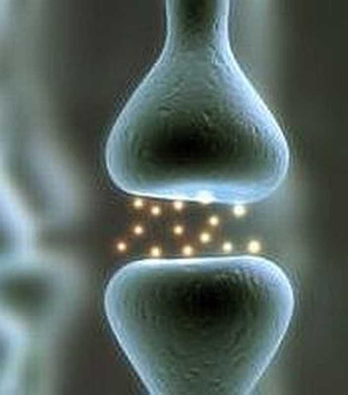 Οι εγκέφαλοι των παιδιών με διαταραχή ελλειμματικής προσοχής παρουσιάζουν έλλειψη πρωτεΐνης