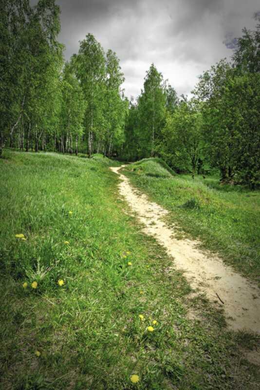 Ne zaboravite pratiti svoj put