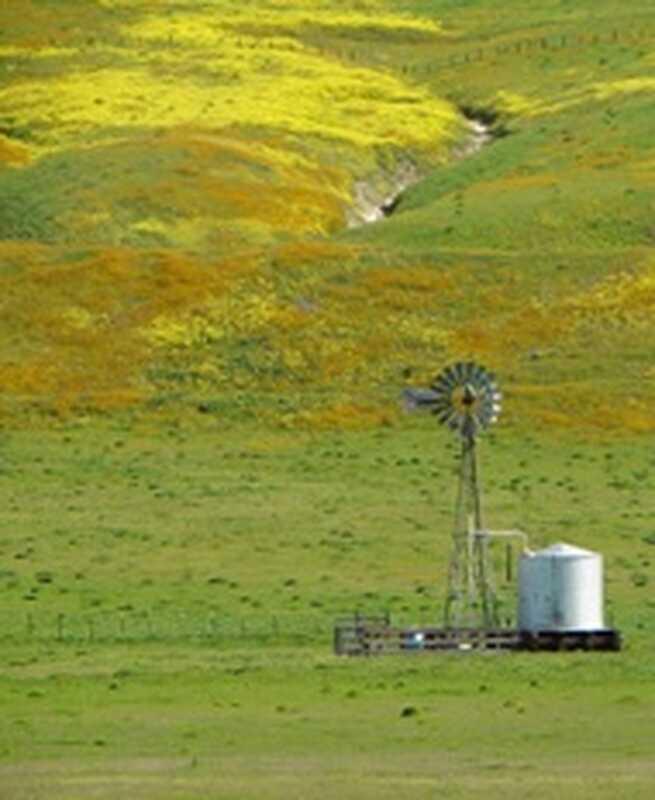 Hopewell: terapeutická zemědělská komunita