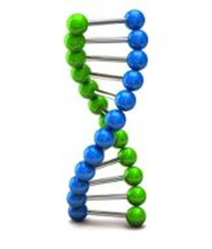 Ncan gen spojený s mánie