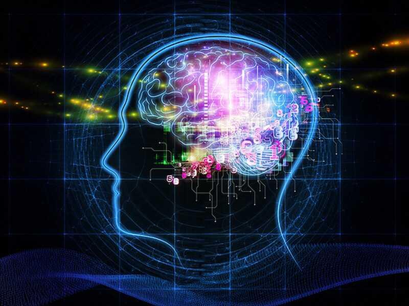 Neli suurimat 2017. aasta psühholoogilist avastust