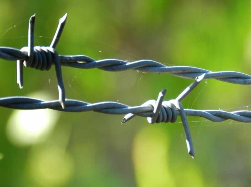 Γιατί δικαιολογούμε τις λυπηρές πράξεις: μια ψυχολογική προοπτική