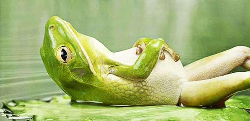 Entspannen Sie Ihr Gehirn - Sie werden mehr lernen und glücklicher sein!