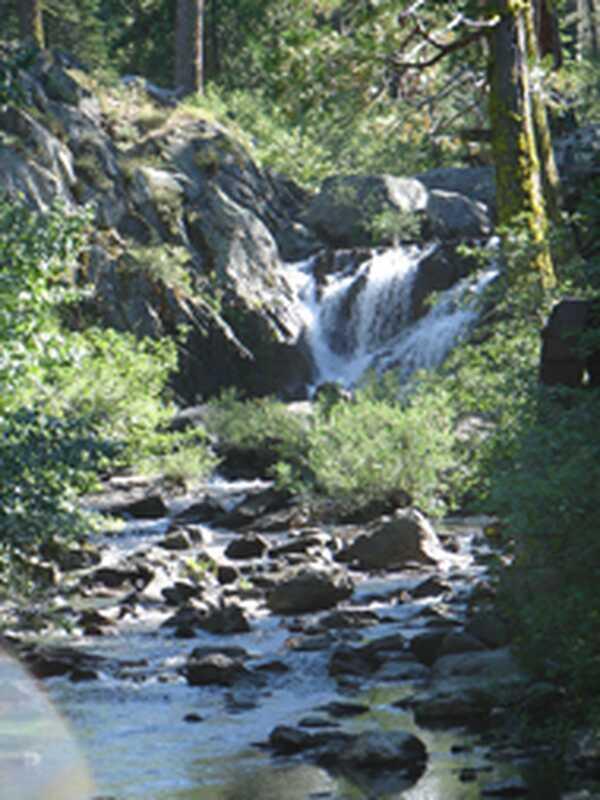 Зошто живееме како река може да нè ослободи: интервју со бодишакса