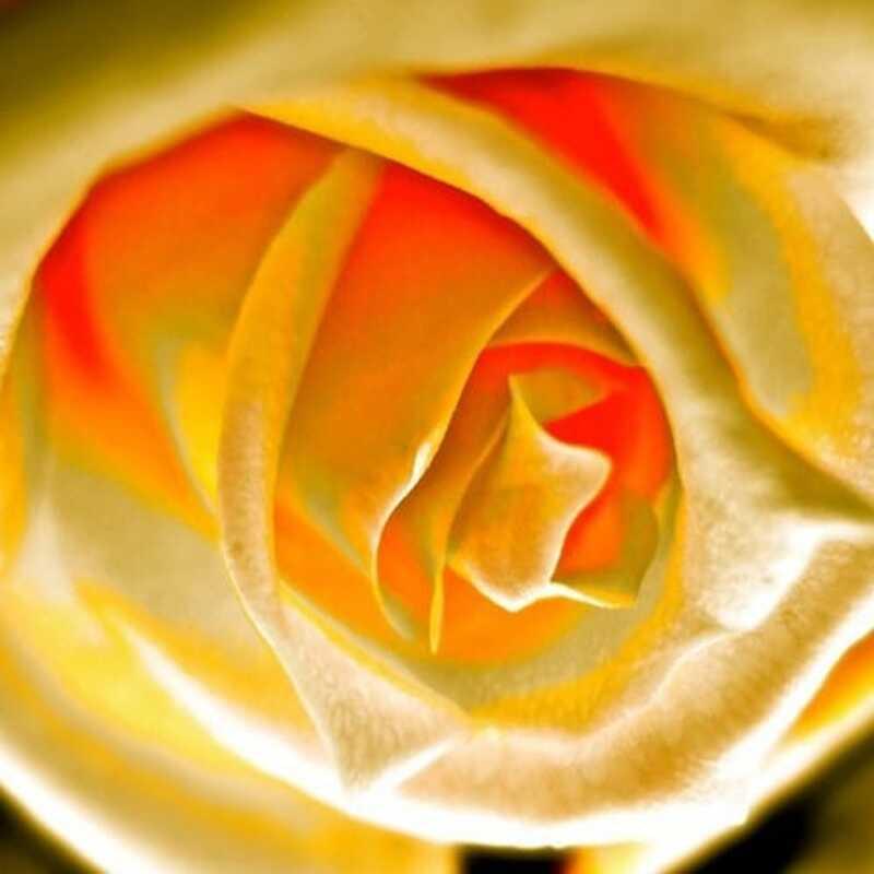 Tilgivelsens kraft: Genoprette egen forbindelse til kærlighed og helbredelse