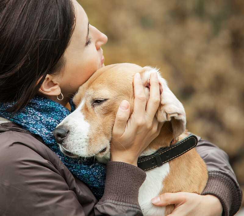 Medfølelse træthed i dyrevelfærds samfundet